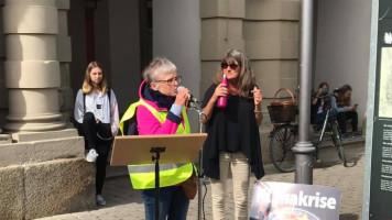 Klimaschutz-Demo in Bad Windsheim