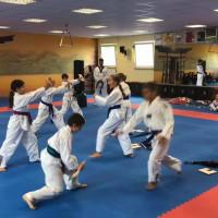 Taekwondo & Hapkido-Schule - Ein Aushängeschild der Kurstadt